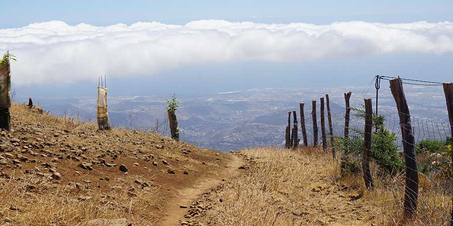 walking-in-gran-canaria-with-canariaways.com