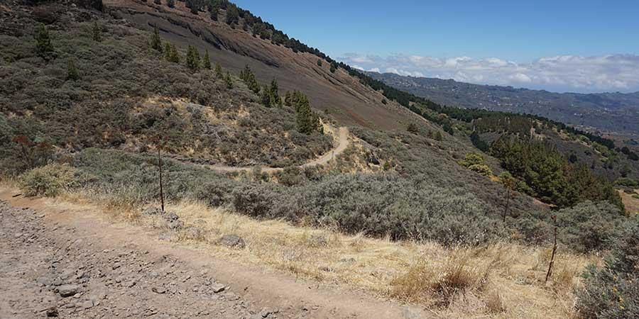 walking-in-gran-canaria-grass-landscape-canariaways.com