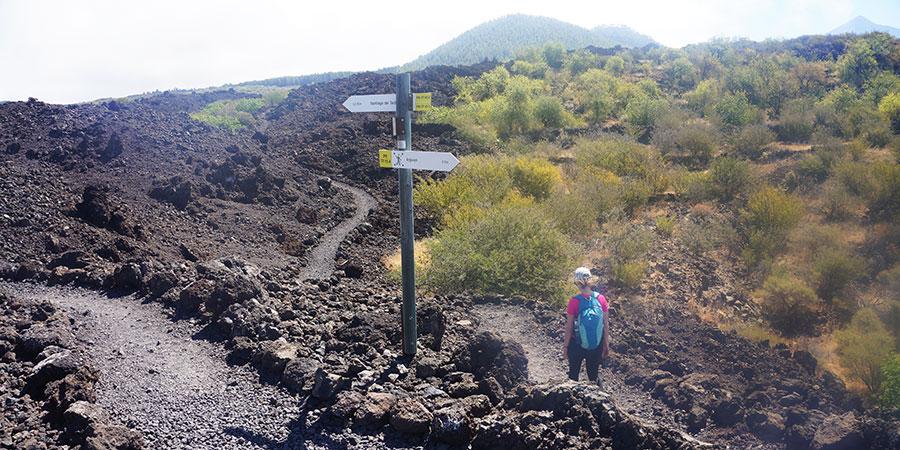 montanas-negras-walking-tenerife-hiking-canary-islands-canariaways