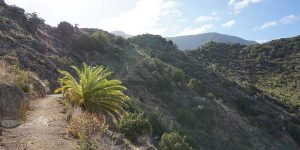 la-gomera-walking-cliff-canariaways.com