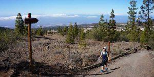 walking-tenerife-teide-hiking-canary-islands-canariaways